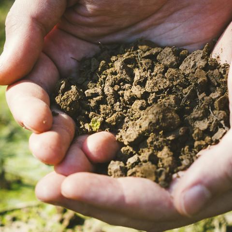 土壌の課題と解決事例