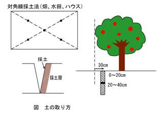 土壌の取り方