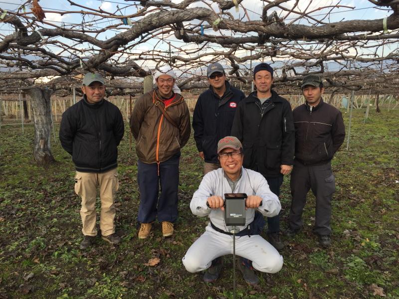 ぶどう・桃生産者の現地視察および土壌物理性の検査